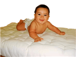 White Lotus Home Organic or Natural Cotton Crib Mattresses